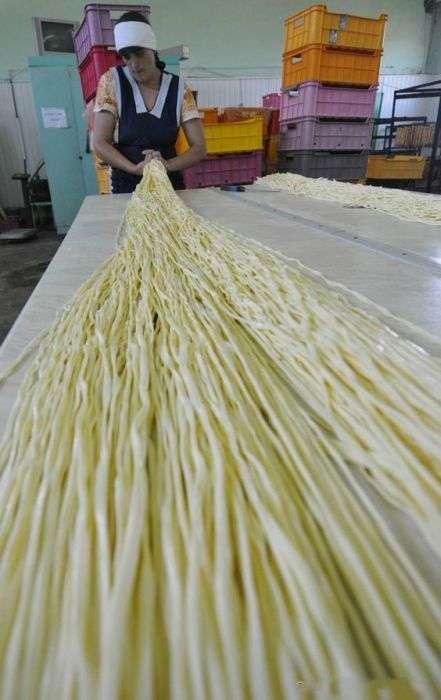 Як робиться сир сулугуні (18 фото)