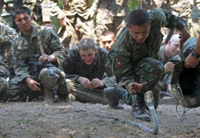 Навчання в Таїланді (10 фото)