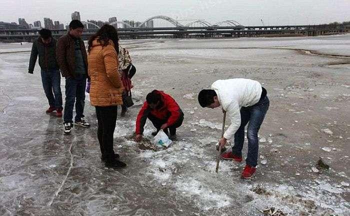 Китайський метод зимової риболовлі (9 фото)