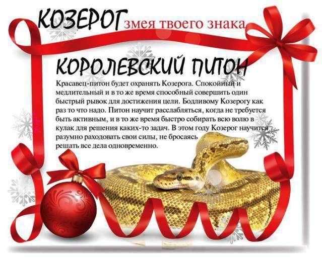 Фінансовий гороскоп на 2013 рік (12 фото)