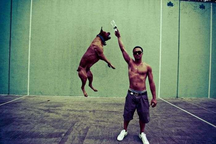 Мистецтво стрибка у фотографіях (81 фото)