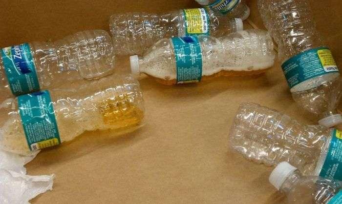 Що можуть знайти в посилках в службі доставки (13 фото)