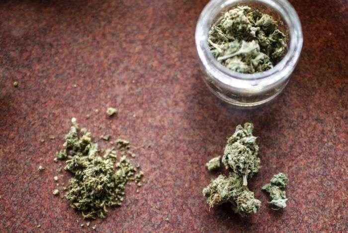 Легалізація марихуани в США (27 фото)