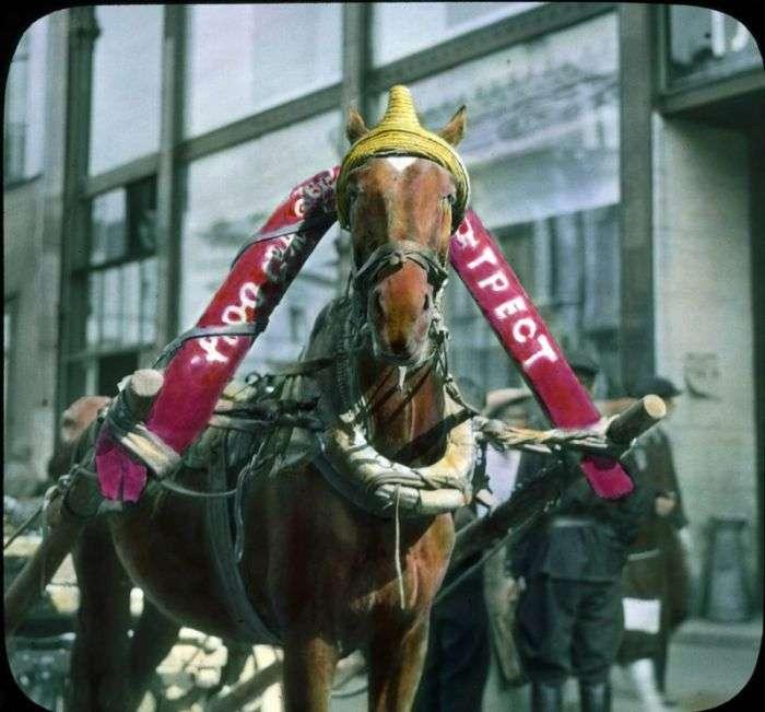 Рідкісні знімки кольоровий Москви 1931 року в кольорі (77 фото)