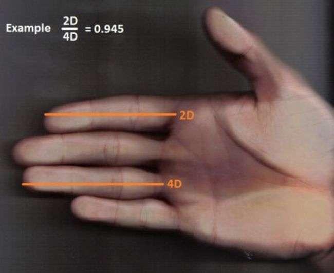 ТОП-10 помилкових способу визначення розміру пеніса (10 фото)