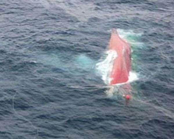 Капітан потопив судно зі словами Вибачте, хлопці (6 фото)