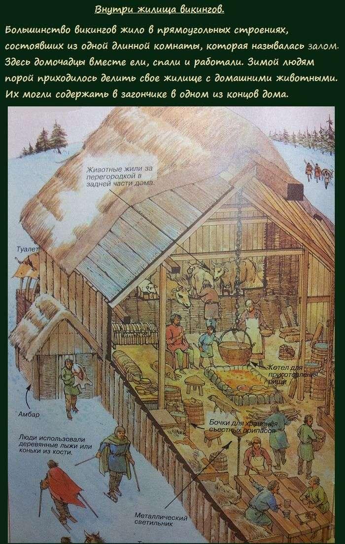 Ким були вікінги, і як вони жили (7 картинок)