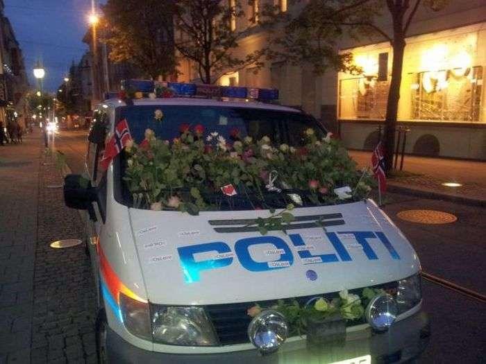 Прикольні поліцейські знімки (82 фото)
