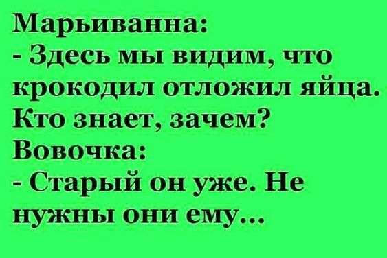 На въезде в Одессу патрульный останавливает авто: — Почему нарушаете?… Юмор,картинки приколы,приколы,приколы 2019,приколы про