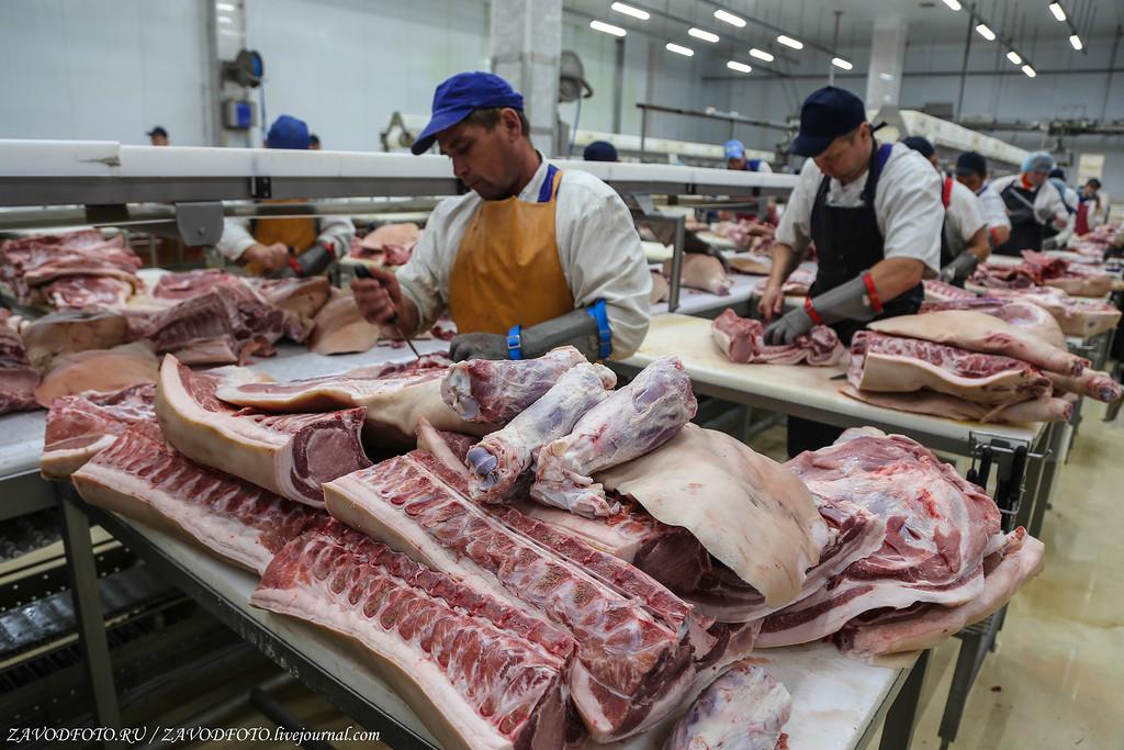 Топ-10 стран по объемам производства мяса МЯСНАЯ