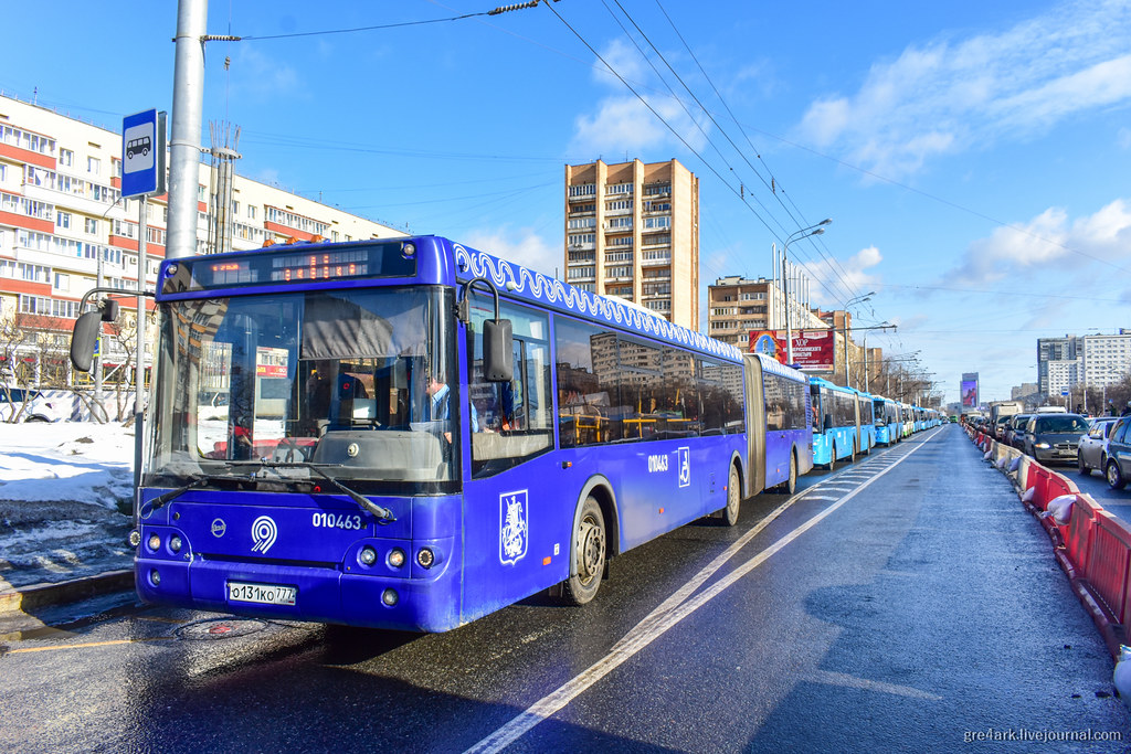 Как в Москве устроили автобусный коллапс пешеходный переход