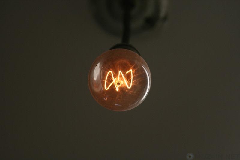 Электрическая лампочка и заговор: сияющий свет на запланированное устаревание познавательное