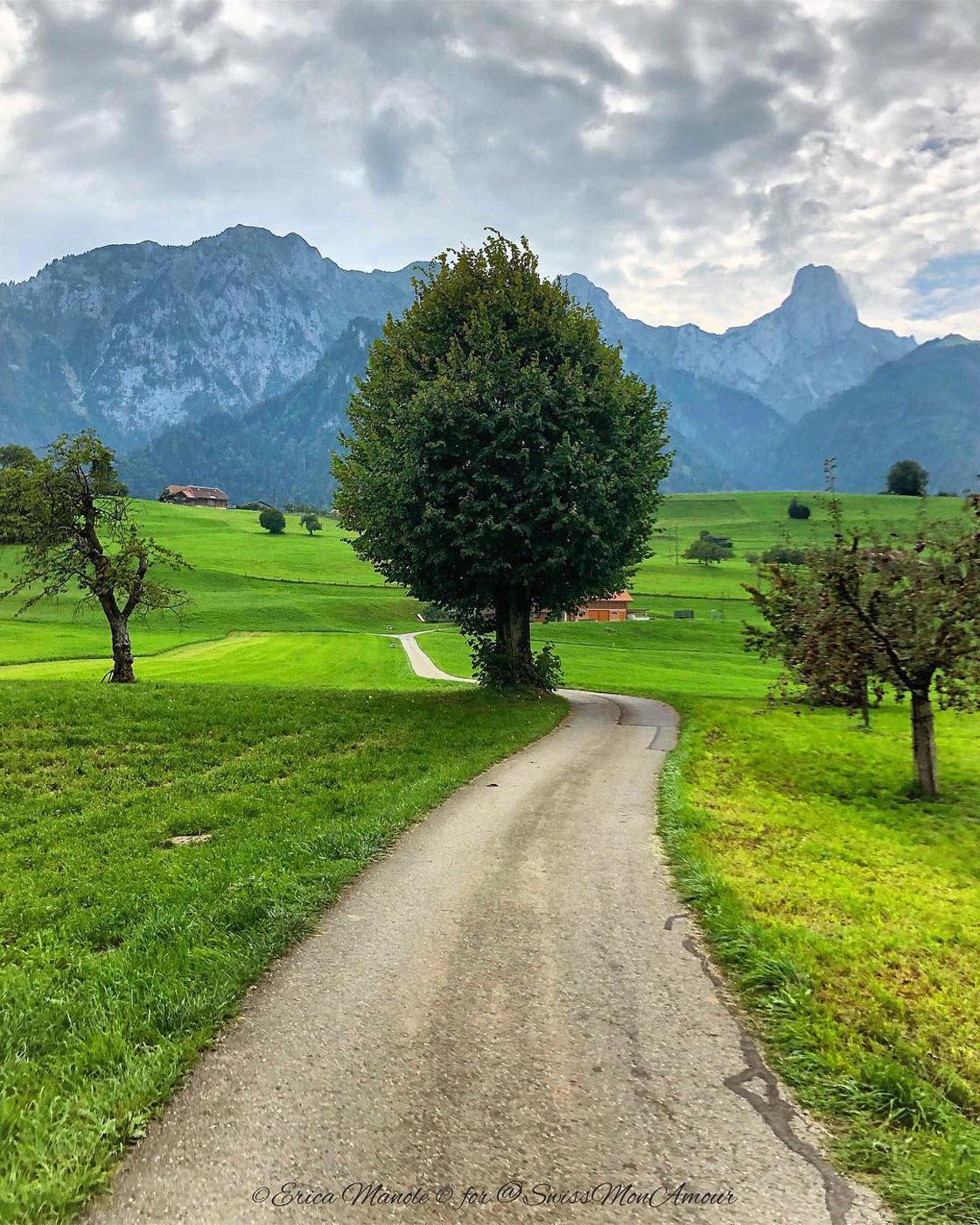 Прекрасные природные пейзажи природа