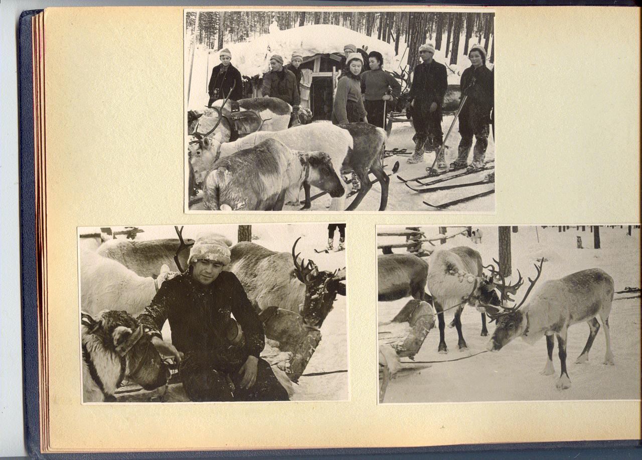 1957 г. Самый удачный зимний поход группы Дятлова дальние дали