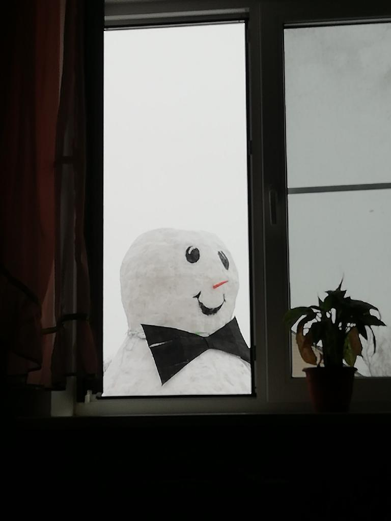 Огромный снеговик, на строительство которого ушло две недели домашний очаг...