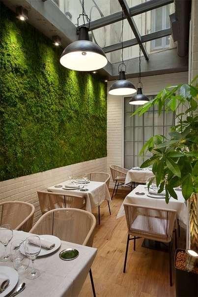вертикальное озеленение в интерьере handmake